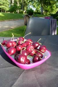 Gaillac Rouault vernissage Miserere 4 juillet 2013 070