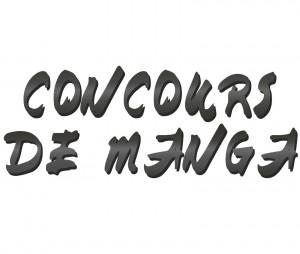manga concours Graulhet 21 nov 2013
