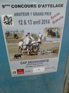 Realmont foire 6 avril 2014 24