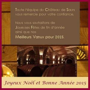 vx chateau de Saurs 2015