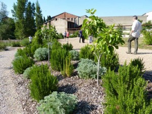 Inauguration Graulhet jardin St Jean 4 juin 2015 005