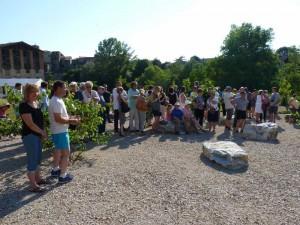 Inauguration Graulhet jardin St Jean 4 juin 2015 022