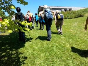 Rando Cinefeuille  Gaillac 27 mai 2015 wiko (13)
