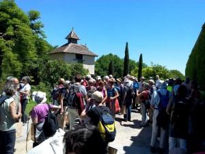 Rando Cinefeuille  Gaillac 27 mai 2015 wiko (20)