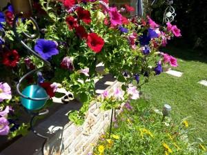 Rando Cinefeuille  Gaillac 27 mai 2015 wiko (5)