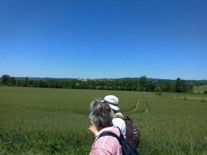 Rando Cinefeuille  Gaillac 27 mai 2015 wiko (9)