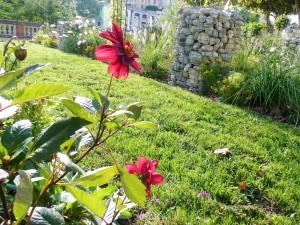 Graulhet 25 sep 2015 jardin Omnisports (19)