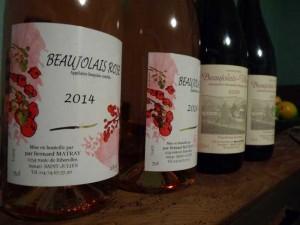 vendanges aout 2015 Beaujolais 027