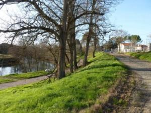 Graulhet  31 dec 2012 promenade VTT (22)