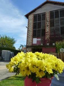 Graulhet Brasserie des Vignes 17 oct 2015 (9)