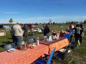Graulhet jardins partages 17 oct 2015 (26)