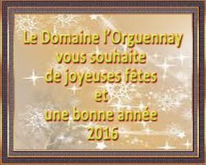domaine orguennay  2016 voeux 2