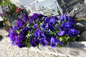 ND des Vignes 28 avr 2016 priere (10)