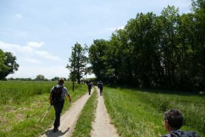 Rando paysagere Cinefeuille Donnazac 25 mai 2016 (123)