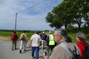 Rando paysagere Cinefeuille Donnazac 25 mai 2016 (36)