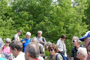 Rando paysagere Cinefeuille Donnazac 25 mai 2016 (49)