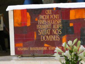 Pele dioc 81 Lourdes 9 aou 2016 (81)