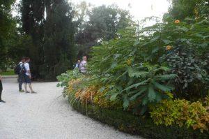 albi-cong-hortis-5-oct-2016-vis-jardins-22