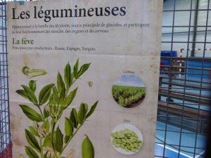 sciences-en-tarn-puylaurens-17-oct-2016-19