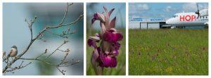 expo-biodiversite-hop-castres-mazamet-oct-2016