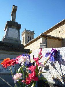 nd-des-vignes-fleurs-et-baies-dautomne-27-oct-2010-022